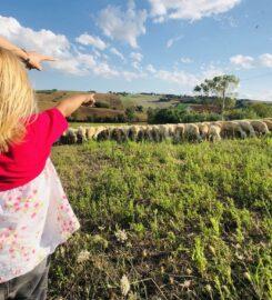 Agriturismo Ritorno alla Natura